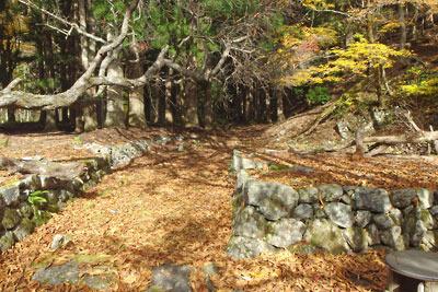 明るい紅葉落ち葉に埋もれる廃村八丁中心部を貫く里道や宅地跡