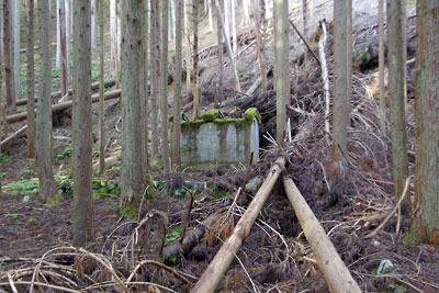 廃村八丁の家屋跡に残る戦中のマンガン採掘者用の厠小屋