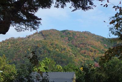 真如堂境内裏の木立から覗く大文字山の紅黄葉