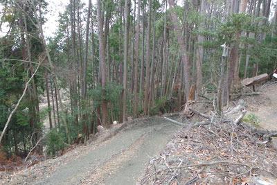 古代・中世からの山容を保ってきた、京都東山遺跡地区の山肌に続く新造成の作業道
