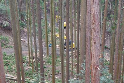 安祥寺山北山腹の作業道分岐付近から見た、谷底に置かれた2台の重機と更に分岐造成された作業道