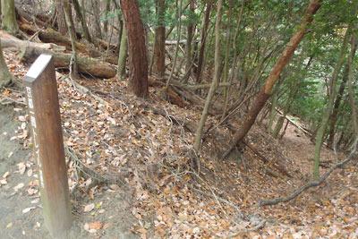 大文字山南の古道峠或いは堀切跡の東に続く、古道または竪堀(たてぼり)跡