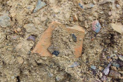 安祥寺山付近の林道掘削面で発見した土師器の欠片