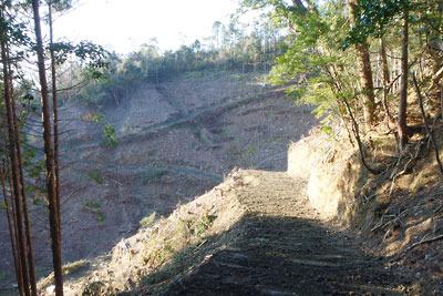安祥寺山北尾根の西側を切りつつ、同山西側の皆伐で荒れた山肌に続く林野庁の伐採作業道