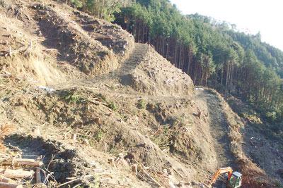 つづらで山肌を切り削る作業道と荒廃した安祥寺山西側の山肌
