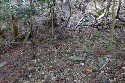 大文字・安祥寺山間の古道を西へ下って見つけた、平坦地末端の石積痕跡?