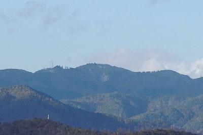 初雪宣言翌日でも冠雪していた京都北山の一峰・天狗杉