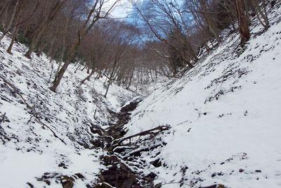 雪はあるが少ない、2月初めの京都・雲取山の三ノ谷奥