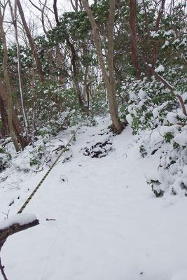 2月初めながら積雪が少なめの京都・雲取山山頂直下の急登道