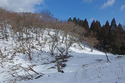 2月初めながら雪の少ない雲取峠
