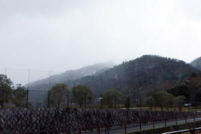 音羽川河畔から見た、雪を纏い、雪に煙る比叡山