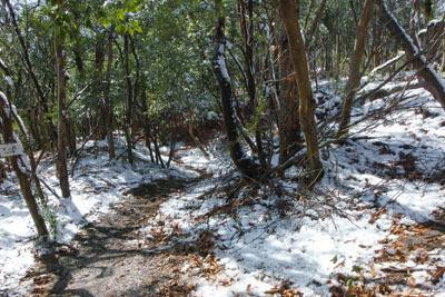 雲母坂城址の郭跡に通された登山道と積雪