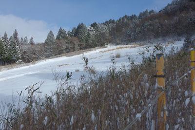 降雪のため一時的にその姿を蘇らせた旧比叡山人工スキー場のゲレンデ