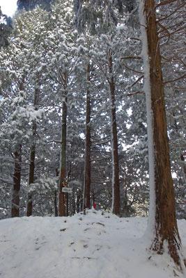 雪に埋もれる叡山最高峰・大比叡山頂(標高848m)