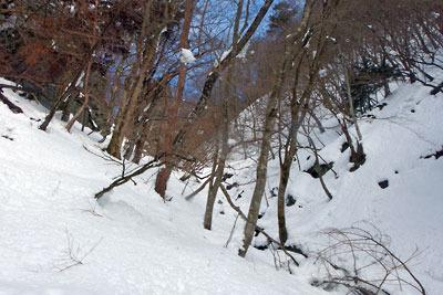 雪に埋もれた芹生三ノ谷の支流沢ルート