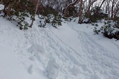 雲取山山頂下の急斜面に生じた雪玉(スノーボール)