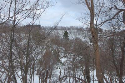 雲取山山頂北から見た雲取山北峰の雪景色