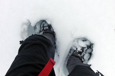 積雪が多い雲取山山頂北でワカン履きながら深く雪に沈む足