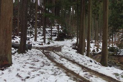 若干雪が残る芹生集落から雲取山方面へと続く林道