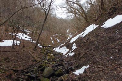 僅か3日で雪が激減した雲取山山頂下に続く三ノ谷の支流沢