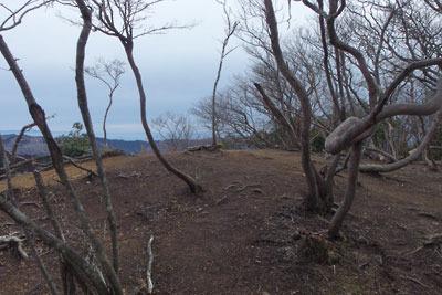 僅か3日で雪が消えた2月半ばの京都・雲取山北峰の山頂