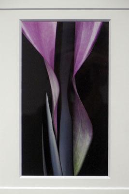 漆芸作品と生花を競演させる白子勝之の写真作品