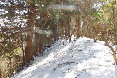 3月初旬の京都・雲取山南尾根の残雪