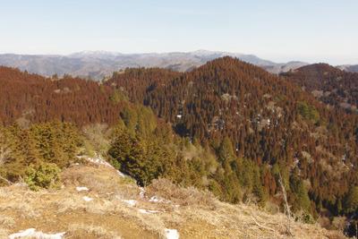 京都・雲取山北峰山頂から眺めた3月初旬の雪のない北山や比良の山々