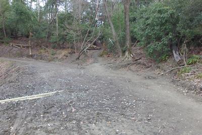 新林道による破壊を受けつつ稜線に続く如意古道(中央奥)