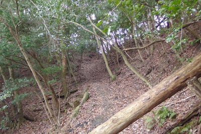 東山稜線裏(東)に続く推定如意古道