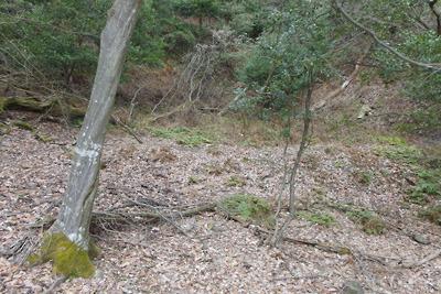 檜尾古寺推定地手前の小平坦地下にある広谷と、その奥に残る別の小平坦地