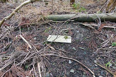 推定如意古道上の谷地に倒れていた標石らしき石柱