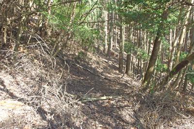 南北の尾根道から深禅院推定地へと向かう古道跡