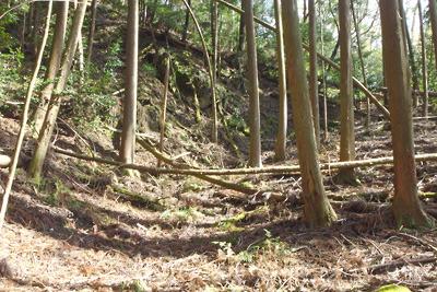 深禅院推定地東の広谷から東に続く不自然な谷