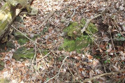 深禅院推定地東の広谷傍の掘込地形で発見された石段廃墟