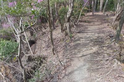 深禅院推定地東の広谷傍の石段跡を登り辿り着いた山科への尾根道