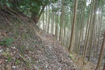 如意寺本堂地区へ続く巻道と浅谷