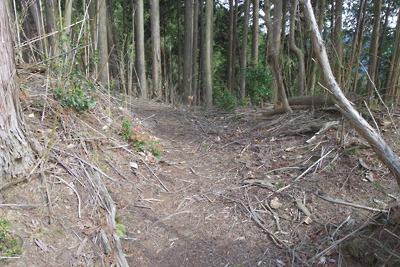如意寺東門推定地の門口部分とそこを通過する推定古道