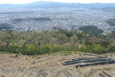 大文字山火床からみた、京都市街の屋並と始まった樹々の新緑