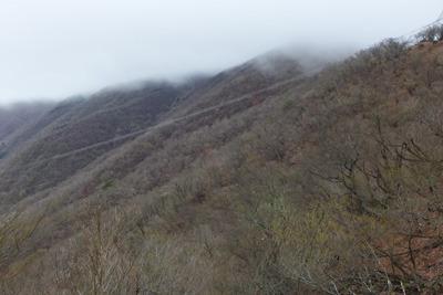 4月下旬ながら完全な冬枯れ風情を見せる鈴鹿山脈・御池岳付近の山肌