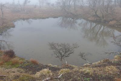 御池岳最大の池沼「元池」全景