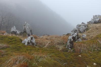 御池岳南方の台地西縁付近の石灰岩