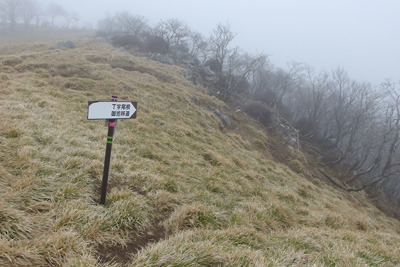 御池岳南西縁とT字尾根・御池川方面の道の出合箇所