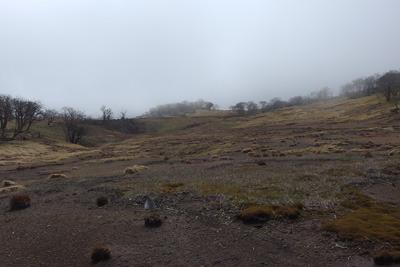 御池岳山上南東部・奥の平付近に広がるテーブルランド的広景