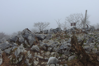 厚い雲と石灰岩に覆われた御池岳山頂