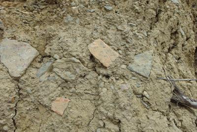 安祥寺山北尾根の林道掘削現場で発見した古代の土師器とみられる土器片