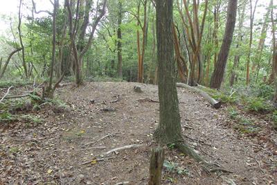古代の経塚か仏堂跡を疑う、安祥寺山の小ピーク