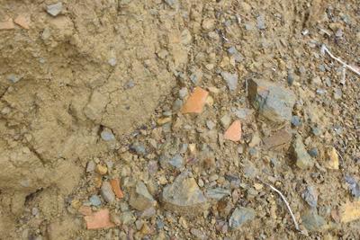 作業道の路端に散乱する採取前の安祥寺山北尾根遺構の遺物