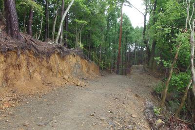 安祥寺山北尾根を斜めに切るように付けられた車道と遺跡側崖面の崩落
