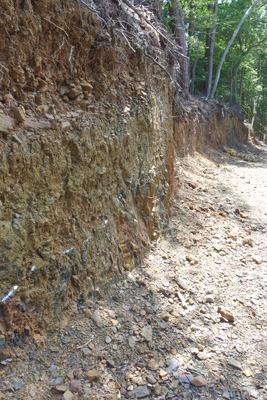 掘削崖面下部の地層境界に白いスプレーで点線が記された安祥寺山北尾根遺構破壊箇所